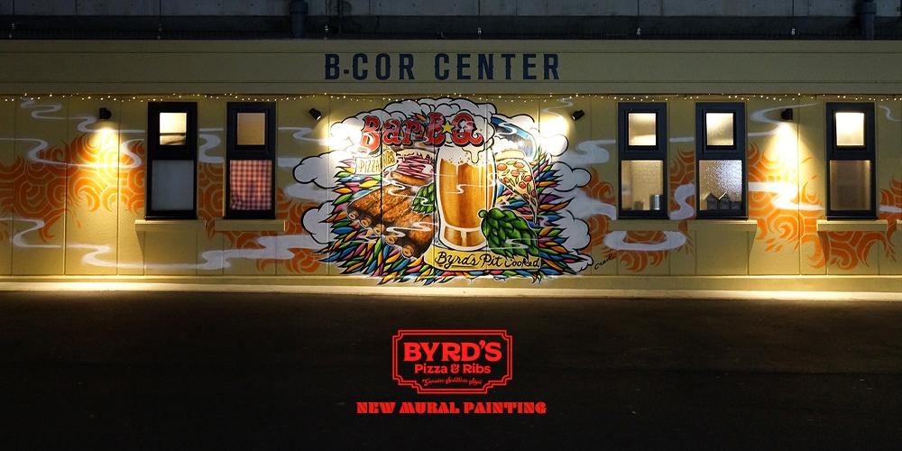 BYRD'S PIZZA &RIBS